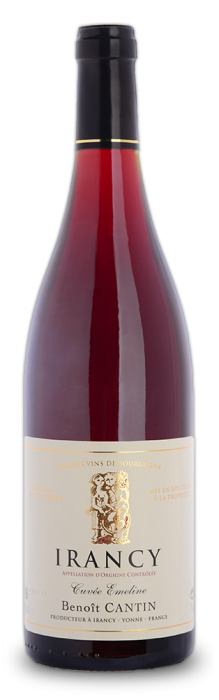 Discover the Irancy Cuvée Emeline of Domaine Benoit Cantin, subtlety of red fruits, heady and charming wine, slightly woody.