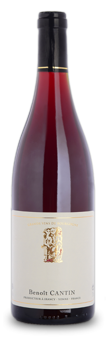 Discover the Bourgogne Passetoutgrain from Domaine Benoit Cantin, very fruity, tender and easy to drink.